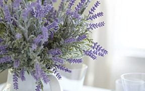 Flowers that will completely change the look of your home 10